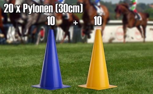 pylonen 30 cm 20 st ck 10 gelbe 10 blaue pferdesport weitere sportarten pferdesport. Black Bedroom Furniture Sets. Home Design Ideas